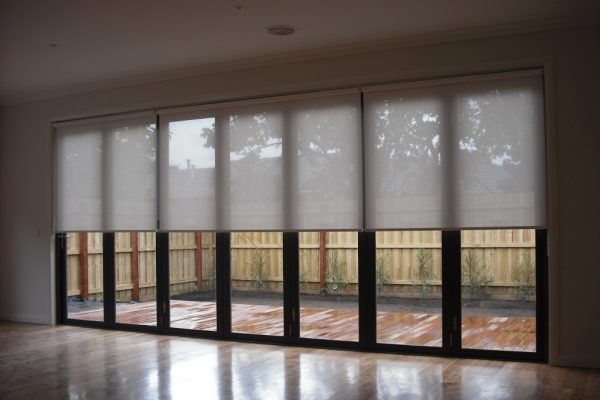 Screen Roller Blinds Melbourne Victoria Tip Top Blinds throughout sizing 1024 X 768 - Window Blinds