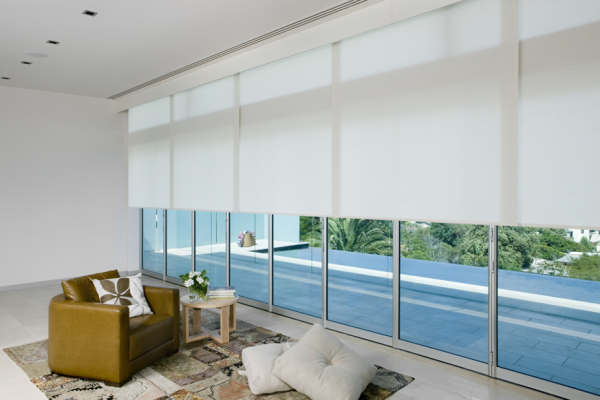Motorized Roller Shade Large