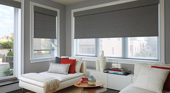 roller-shades Blackout